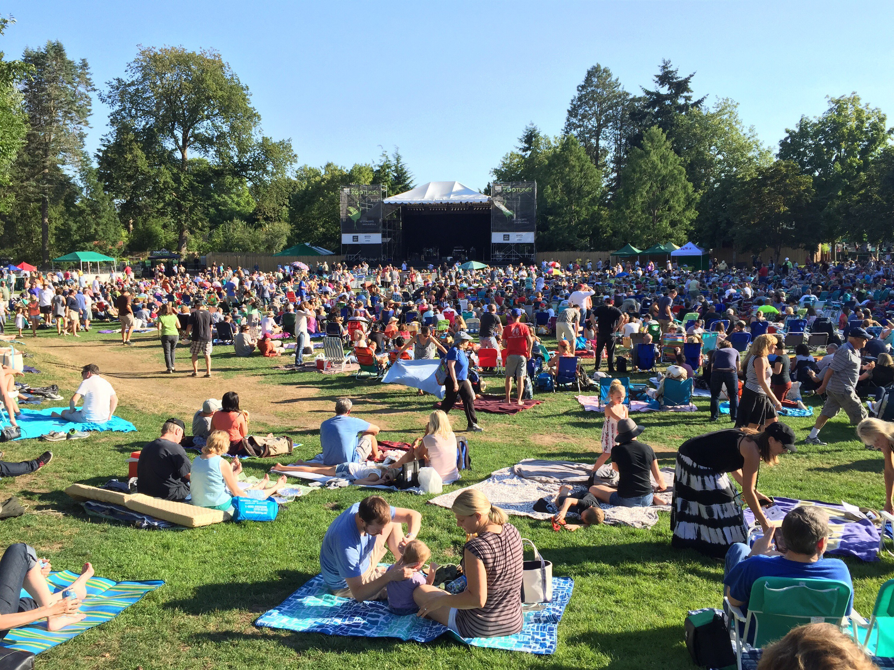 ZooTunes Brought Pop to Woodland Park